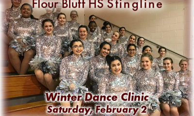 image FBHS Stingline graphic for Winter Dance Clinic
